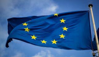 EU treba žešće stisnuti Facebook i Google, kaže pirat parlamentarac
